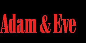 AEBoiseID logo (1)